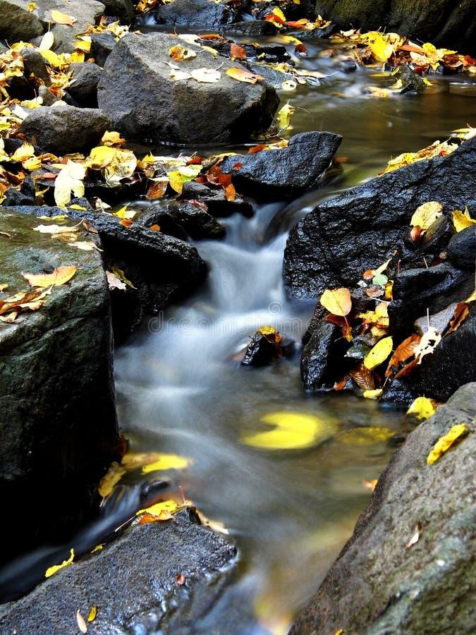 在新星巴娜,斯洛伐克的小小河 库存照片