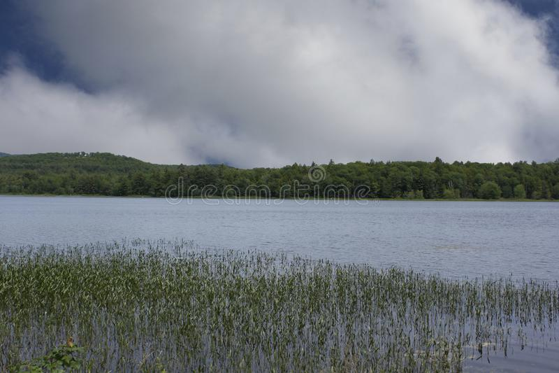 在新罕布什尔池塘的安静的reflecton斑点 免版税图库摄影