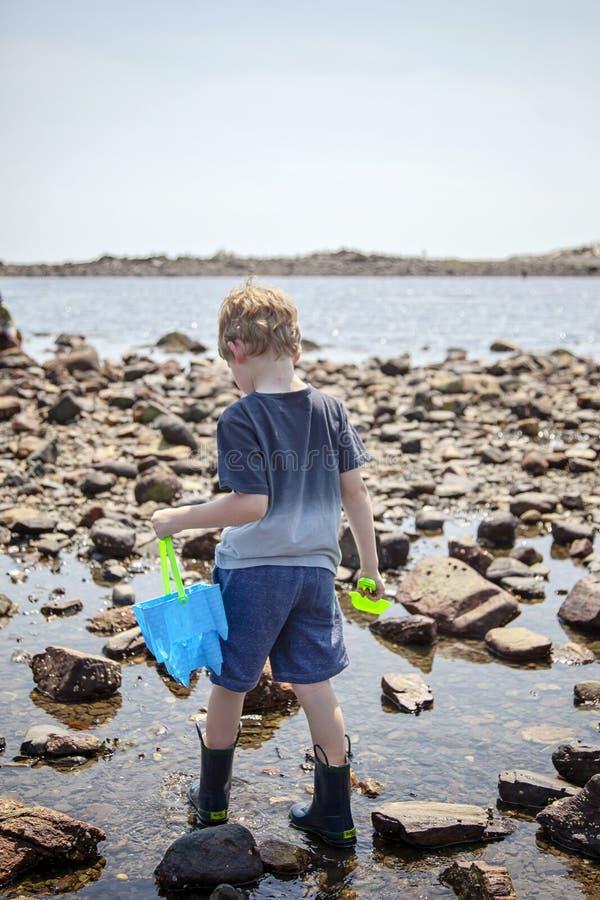 在新罕布什尔海岸的男孩探索的浪潮水池 库存图片