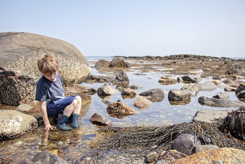 在新罕布什尔海岸的男孩探索的浪潮水池 图库摄影
