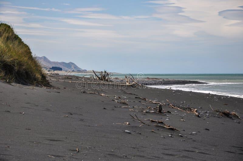在新西兰的南岛的东海岸的黑沙滩 免版税库存照片