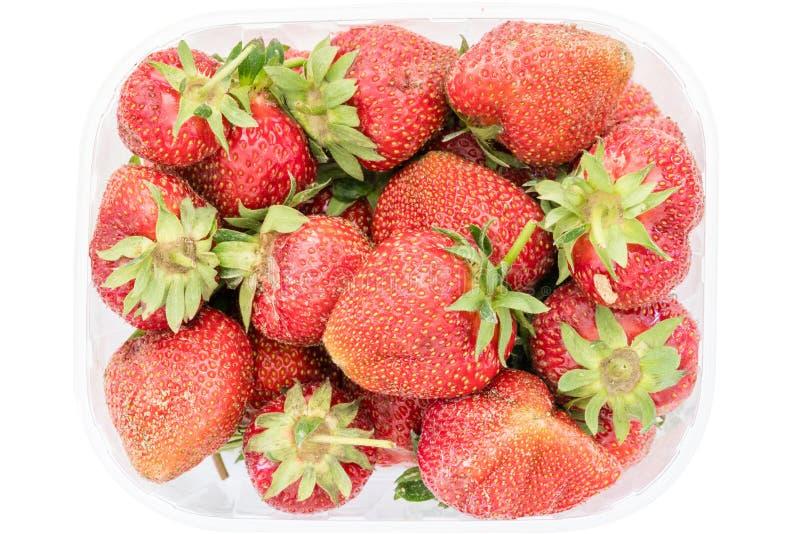 在新鲜的成熟有机草莓的顶视图在透明塑料零售包裹 查出在与裁减路线的空白背景 免版税库存图片
