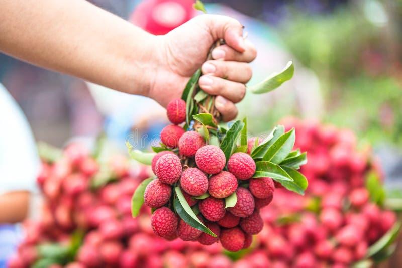 在新鲜的荔枝的选择的焦点在泰国市场上用手举行  免版税库存图片