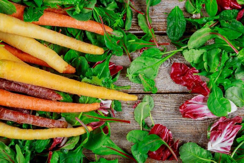 在新鲜的莴苣的新鲜的有机彩虹红萝卜在木背景 库存照片