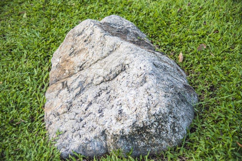 在新鲜的绿草的石头 免版税库存照片