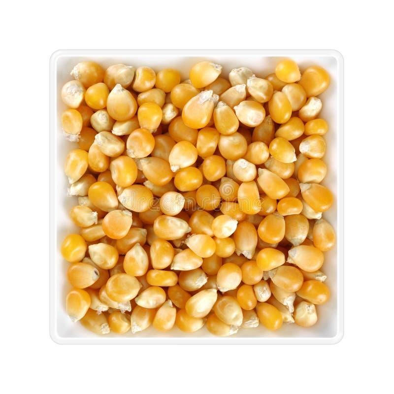 在方形的碗的干玉米五谷在白色背景 库存照片