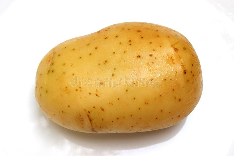 在旁边巨人一唯一土豆关闭背景 库存照片