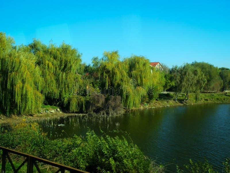 在旁边自然视图在途中期间的湖对通过内地区域在罗马尼亚 免版税库存图片