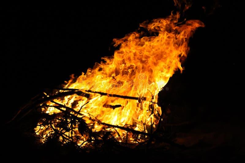 在旅游阵营的篝火在晚上 在黑背景的红色火焰 E 库存图片
