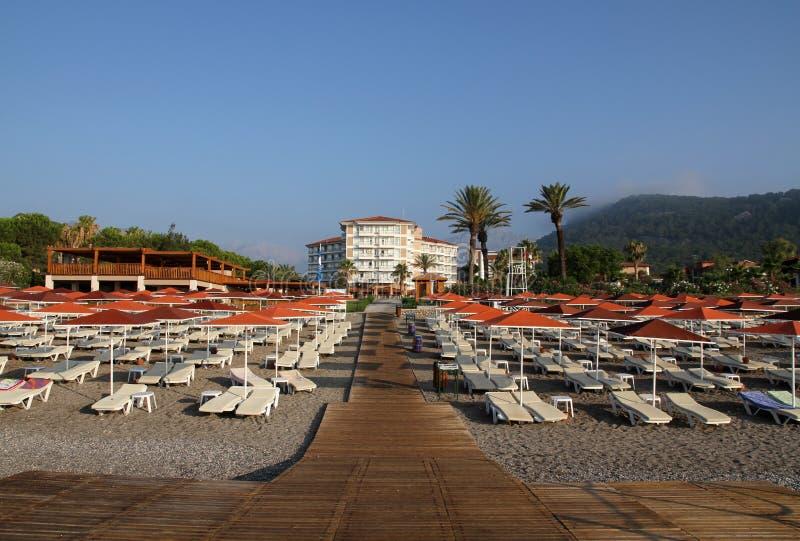 在旅馆海滩的Sunbeds  免版税库存照片