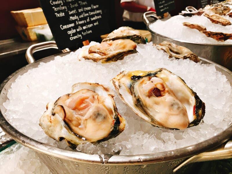在旅馆的自助餐的大牡蛎 库存图片