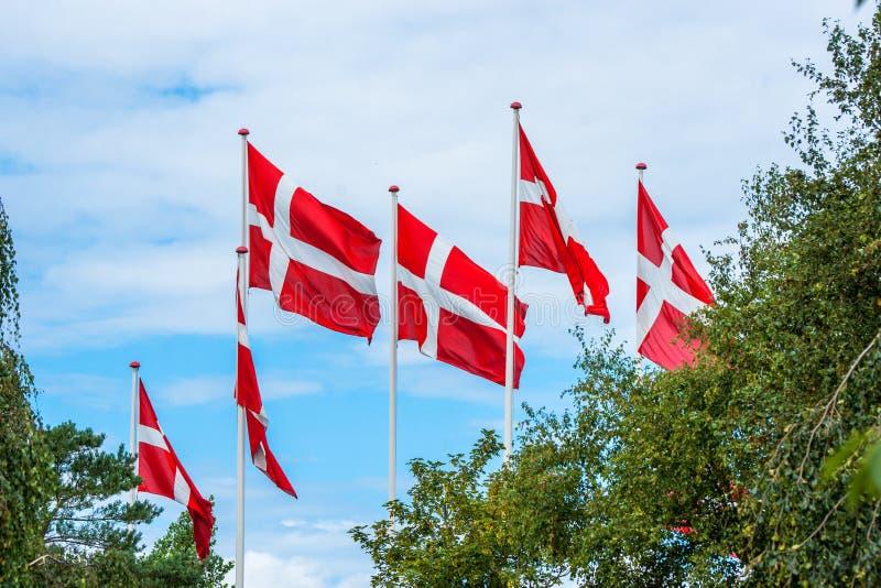 在旗杆的六面丹麦旗子 免版税库存照片