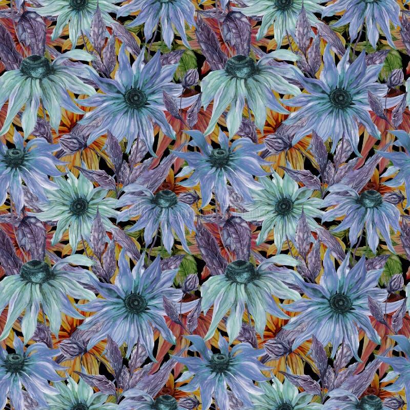 在无缝的花卉样式的美好的蓝色海胆亚目花coneflower 多孔黏土更正高绘画photoshop非常质量扫描水彩 库存例证