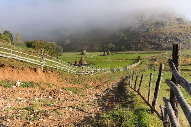 在日出光的美好的农村山风景与早晨雾 免版税图库摄影