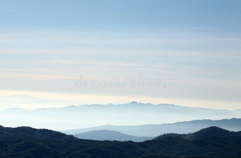 在日出天空背景的一个平安的米领域 库存照片