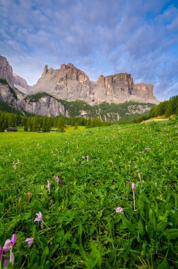 在日出期间的白云岩,意大利