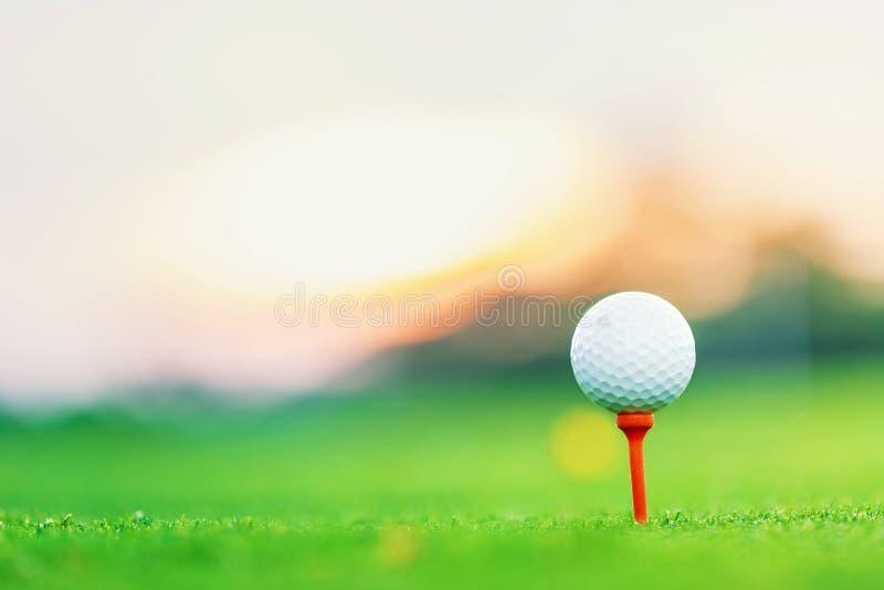 在日出期间,在发球区域的高尔夫球在发球区域与迷离绿草前景和弄脏五颜六色的天空有剪影树背景 库存照片