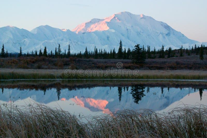在日出期间的麦金利山从湖 库存照片