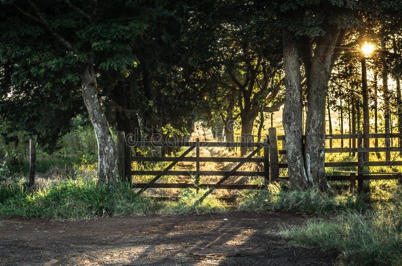 在日出的农厂门 图库摄影