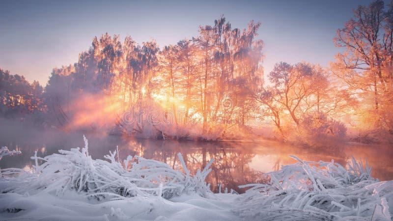 在日出的冬天风景 免版税库存照片