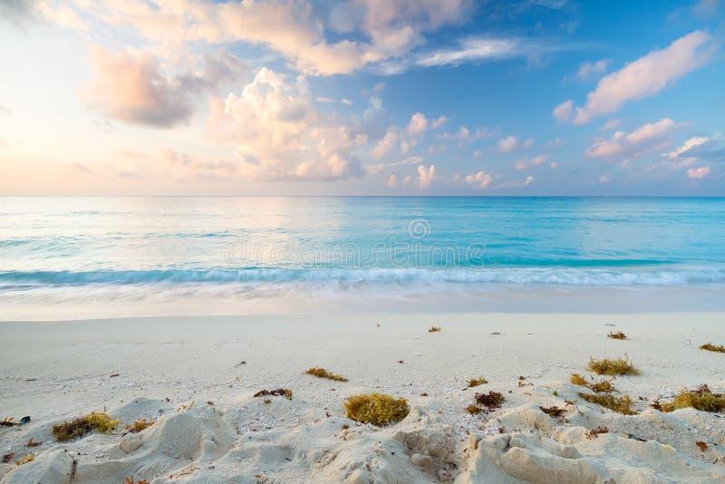 在日出的加勒比海滩 免版税图库摄影