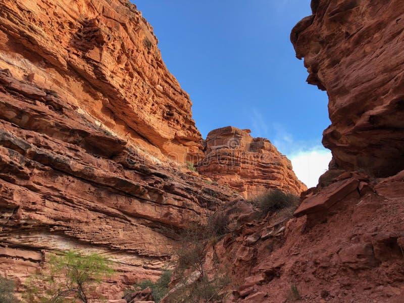 在日出的大峡谷国家公园里面 免版税库存照片