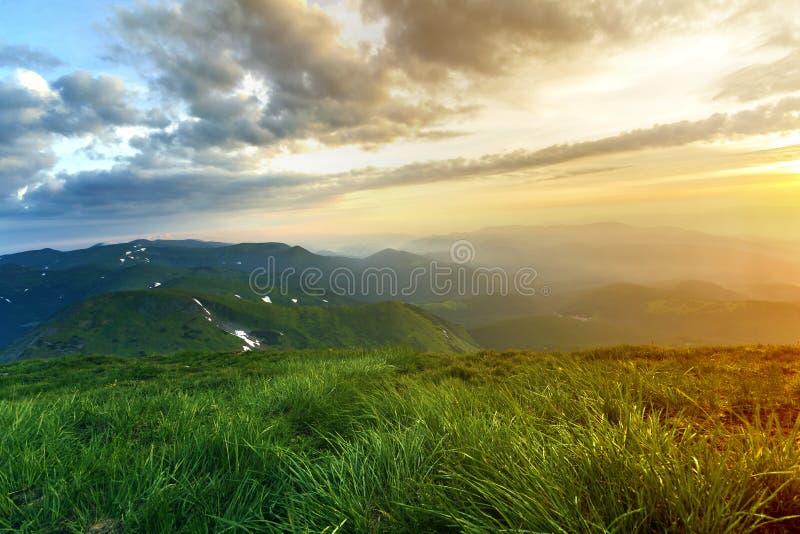 在日出的宽夏天山景 遥远发光的橙色的太阳上升在绿色象草的小山软的草的蓝色多云天空和 免版税库存图片