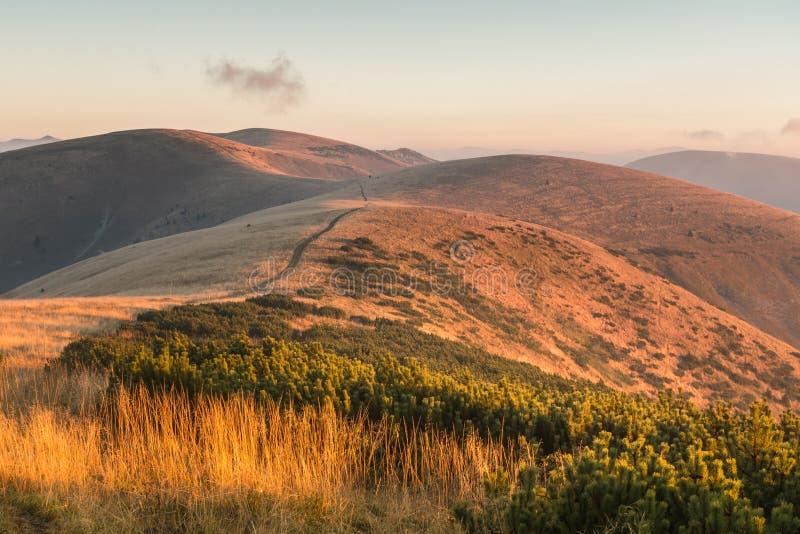 在日出的山土坎 图库摄影