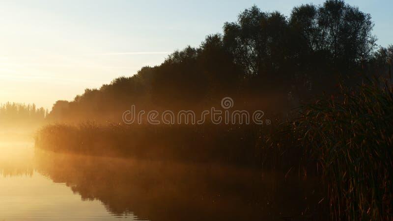 在日出的早晨雾在池塘在卡托维兹 波兰 免版税库存图片