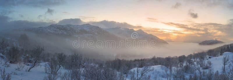 在日出的早晨雾 免版税库存图片