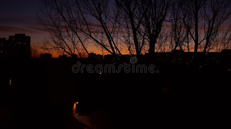 在日出的春天都市风景 免版税库存照片
