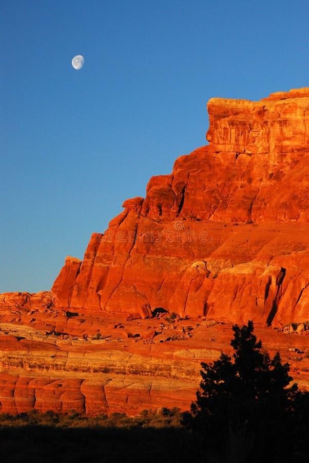 在日出的沙漠月亮 图库摄影