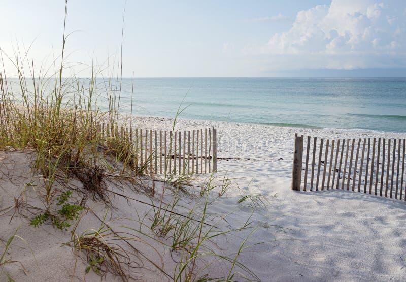 在日出的美丽的海滩 免版税库存图片