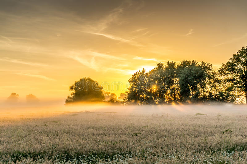 在日出的自然保护区 免版税库存图片
