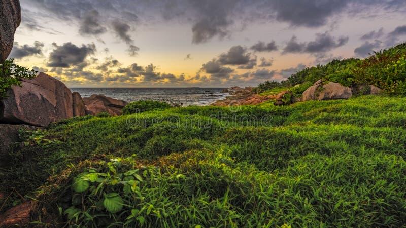 在日出的豪华的绿草在塞舌尔群岛1 库存图片