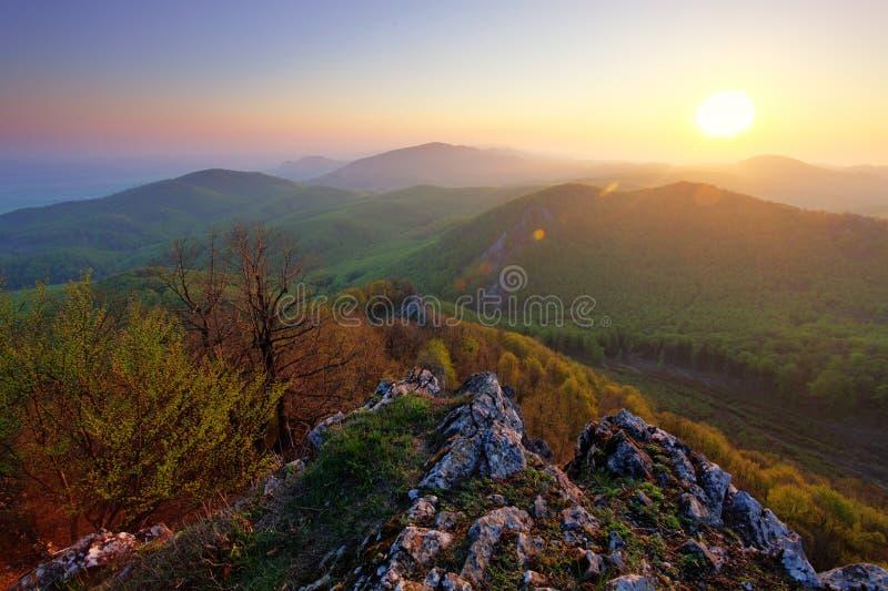 在日出的绿色山 免版税库存图片