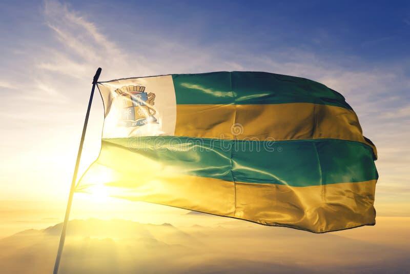 在日出雾霭中挥舞的巴西国旗 免版税库存照片