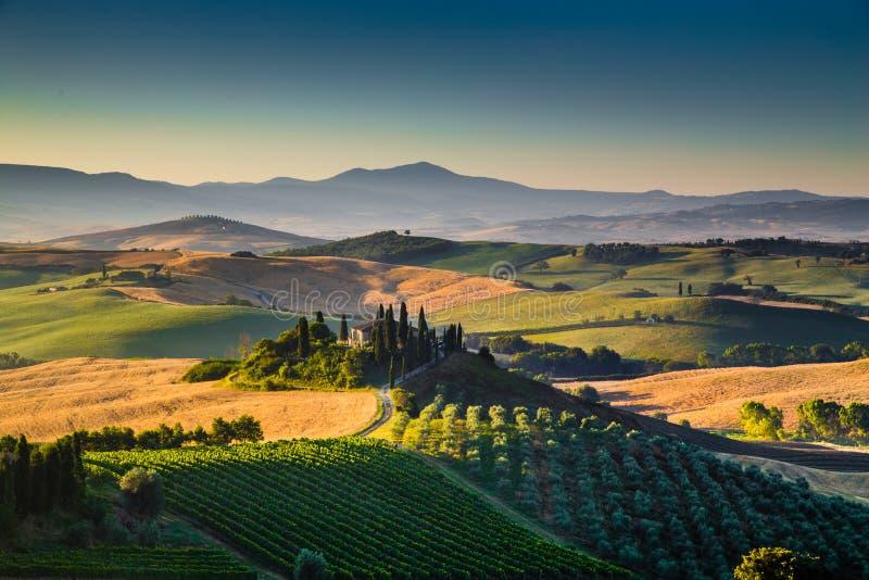 在日出, Val d'Orcia,意大利的风景托斯卡纳风景 库存图片