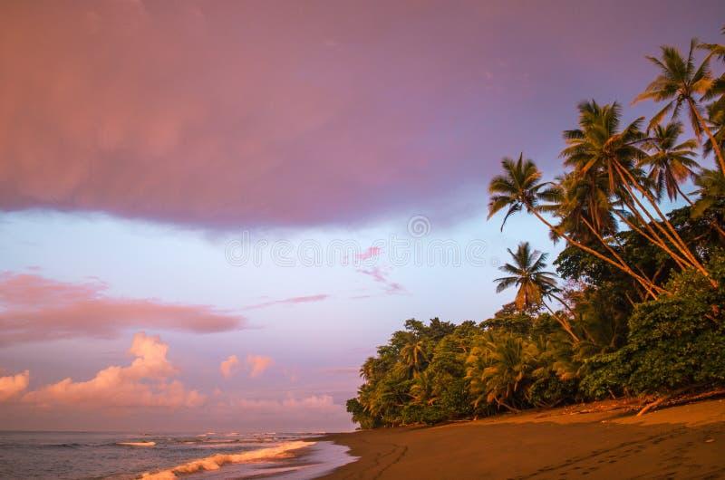 在日出-哥斯达黎加的热带海滩 图库摄影