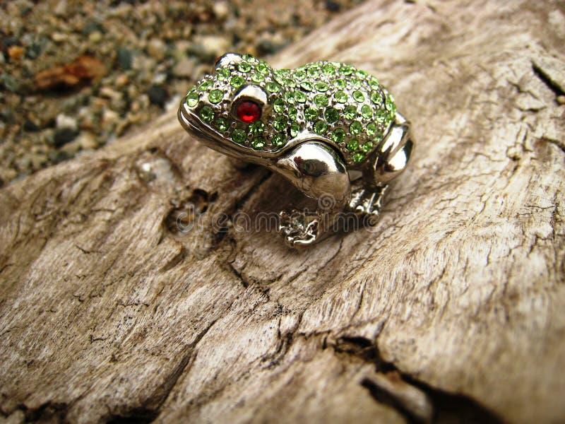 在日志特写镜头的被修宝石的青蛙 免版税库存照片