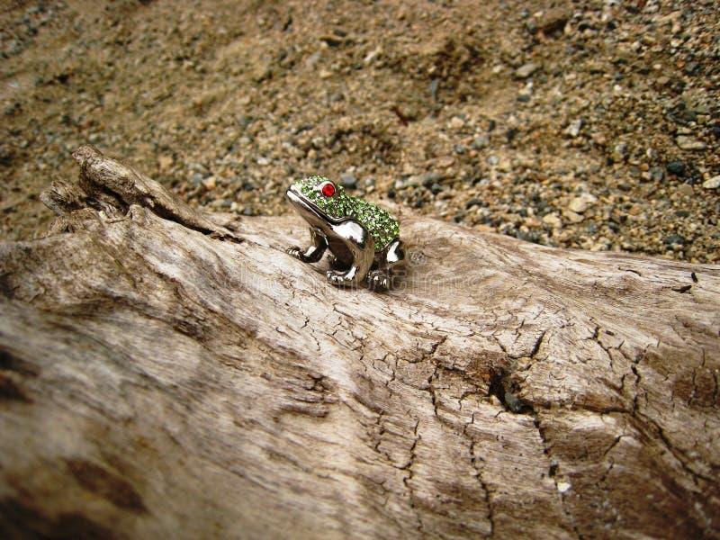 在日志的被修宝石的青蛙 免版税图库摄影