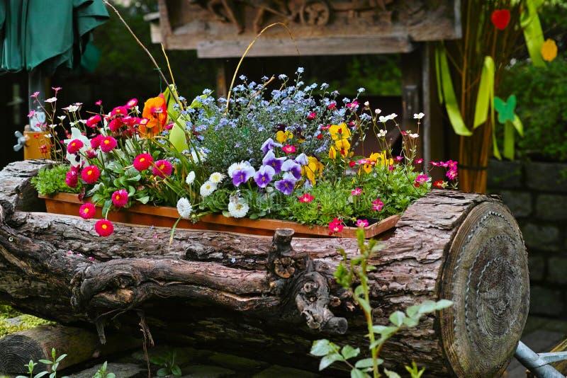 在日志水道装饰的春天花 免版税图库摄影