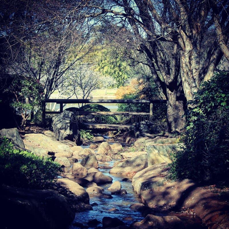 在日本庭院的小河 免版税库存图片