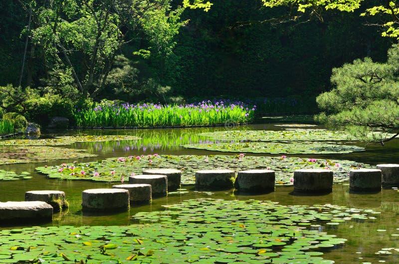 在日本庭院,京都日本池塘的石道路  免版税图库摄影
