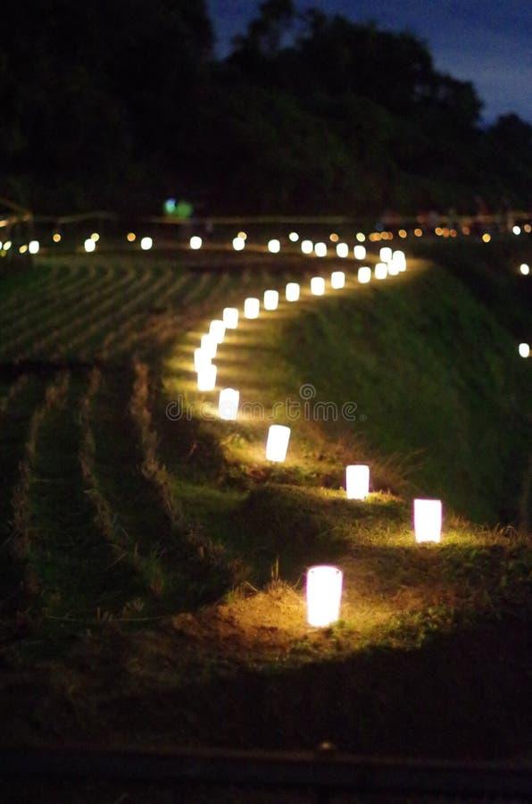 在日本稻米的蜡烛 库存图片