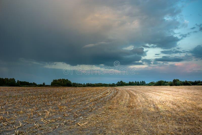 在日落以后的五颜六色的多雨云彩在亩茬地 免版税图库摄影
