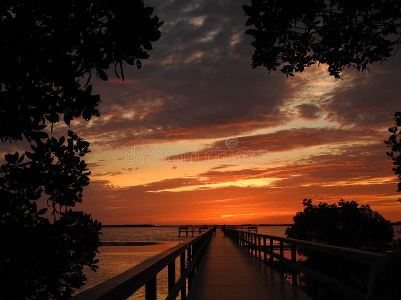 在日落以后被绘的天空 库存图片