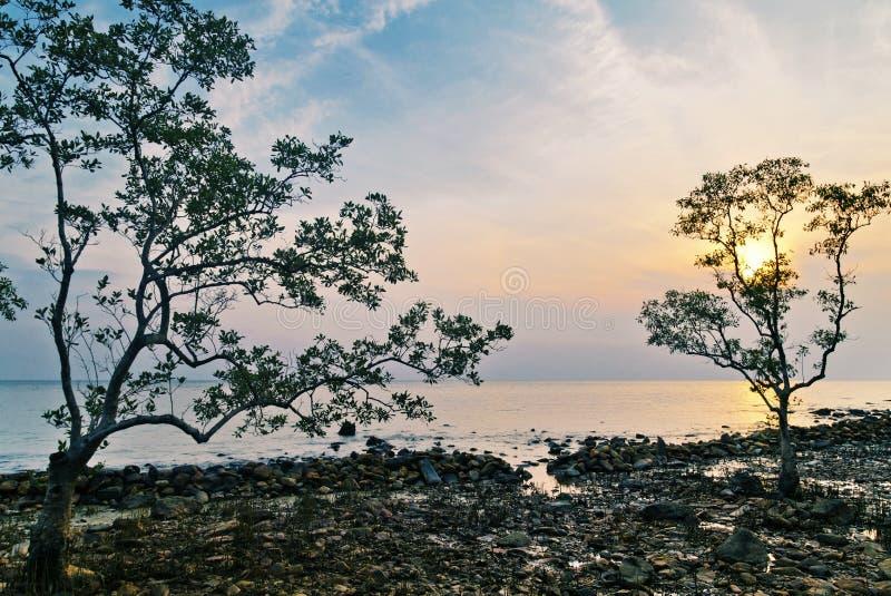 在日落光的石头海滩 库存图片