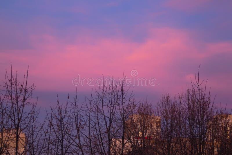 在日落前的不可思议的桃红色云彩在城市 库存照片