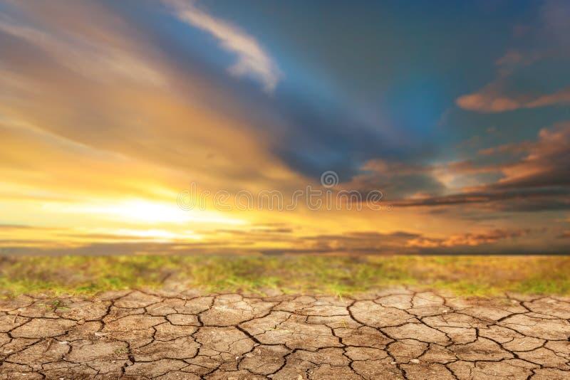 在日落和旱田前的蓝天 免版税图库摄影